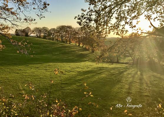 November 2019  -Breckerfeld-Delle