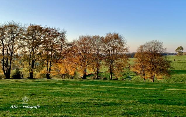 Oktober 2019 -Breckerfeld-Delle-