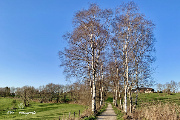 März 2020 Breckerfeld-Delle