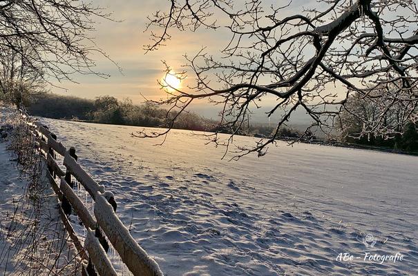 Februar 2021 -Meininghausen-