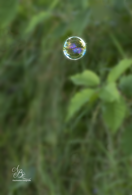 Seifenblasen-Spielerei  -Juli 16-