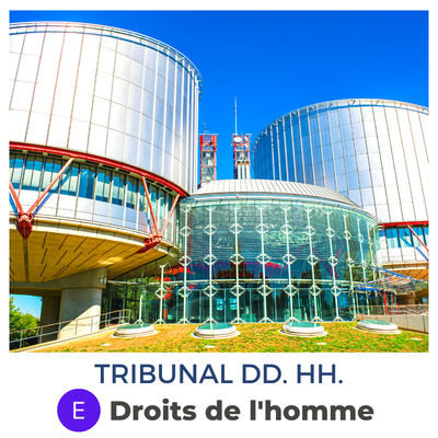 Tribunal de Derechos Humanos · Droits de l'homme