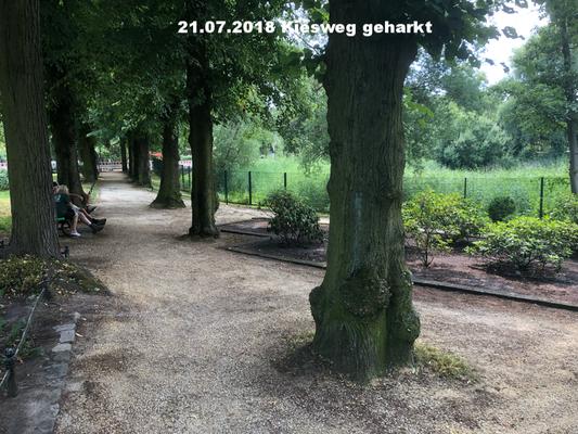 21.07.2018 Kiesweg Ostsseite vom Teich
