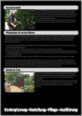 Einbau- und Pflegeanleitung - Fertighecken - Mobilane Fertighecke - Efeuhecke (4)