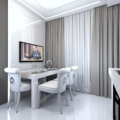 дизайн проект кухни в современном стиле зона тв