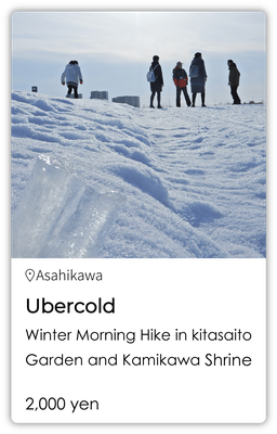 Ubercold Winter Morning Hike in Kitasaito Garden and Kamikawa Shrine