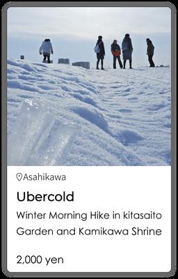 Ubercold Winter Morning Hike in Kitasaito Garden and Kamikawa Shrine