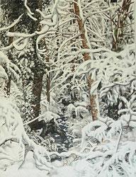 """""""Winterwald"""", Aquarell und Tusche, 61 x 46cm, 2012, verkauft"""