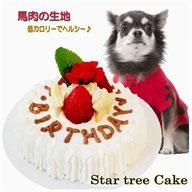 小型犬用ミニケーキ,無添加,馬肉生地食べきりサイズ,WANBANAワンバナ