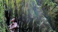 Mystères des bois de Paiolive et d'Abeau