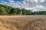 Graanveld Hoog Soeren