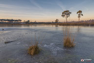 Landschapsfotografie: hatertse en overasseltse vennen-winterlandschap. landschap