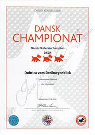 Dänischer Champion