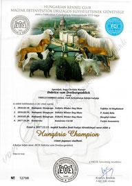 Ungarischer Champion