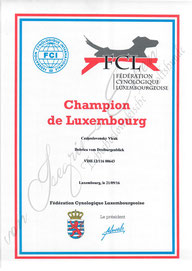Luxemburgischer Champion