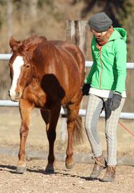 Natascha Leiler und ein Pferd gehen gemeinsam frei über den Reitplatz
