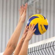 zur Volleyballabteilung