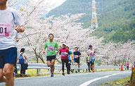 秋葉ダムさくらマラソン/ボランティア