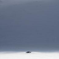 photography winter snow Sarek Spami