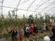apprendre et se divertir La cueillette de cappy - Cappy - Somme - Picardie - Vallée de la Somme - Pays du Coquelicot- fruits et legumes de saison - producteur