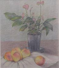 あらかわの桃 色鉛筆10号