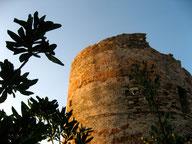 La tour d'Erbalunga