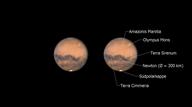Marsopposition 2020