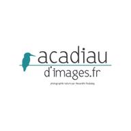 Alexandre Roubalay - Photographe nature à Lassay-sur-Croisne, trait d'union entre Sologne et vallée du Cher
