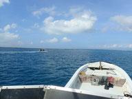 石垣島から竹富島に向かうダイビングボート「HARU」号
