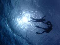 石垣島の海でシュノーケリング