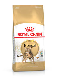 Alimentation Bengal croquette adulte - Elevage Tribal Bengal - Royal Canin