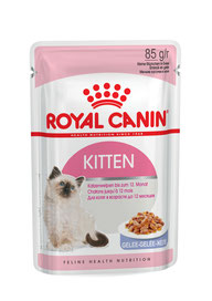 Alimentation Bengal croquette chaton (kitten) - Elevage Tribal Bengal - Royal Canin