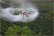 Alimentazione senza pesticidi, si può