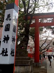 投稿: ともチンっ♪さん、新宿花園神社(4月5日)