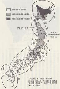 縄文時代の日本の文化圏
