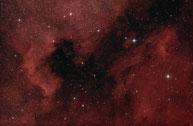 Pelikannebel Pelican Nebula