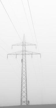Nebel im Widukind Land