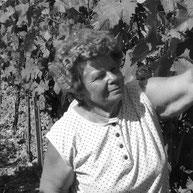 Winzer Winzerin Wein Renate Büchold Eibelstadt