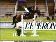 poulinière selle français concours