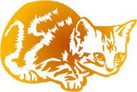 猫ーペットケアワンデイ泉北