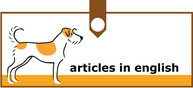 articles in english!!!
