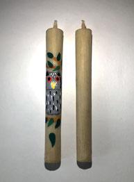 愛知県の鳥コノハズク(ふくろう)