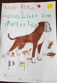 Boxer Welpen NRW Muttertag