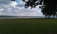Blick auf den Senftenberger See