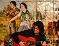 фламенко-шоу Villa Rosa