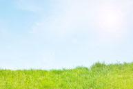 太陽と青空と芝生