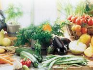 gesunde Ernährung Stoffwechsel Gesundheit Lebensmittel Obst Gemüse