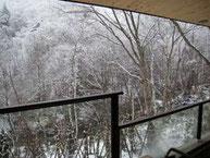 渓谷の雪化粧