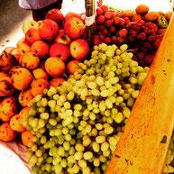 南米 フルータ fruta 大浦雅史 金町 葛飾区 美容室 美容院 ヘアサロン