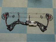 Bowtech Destroyer 340